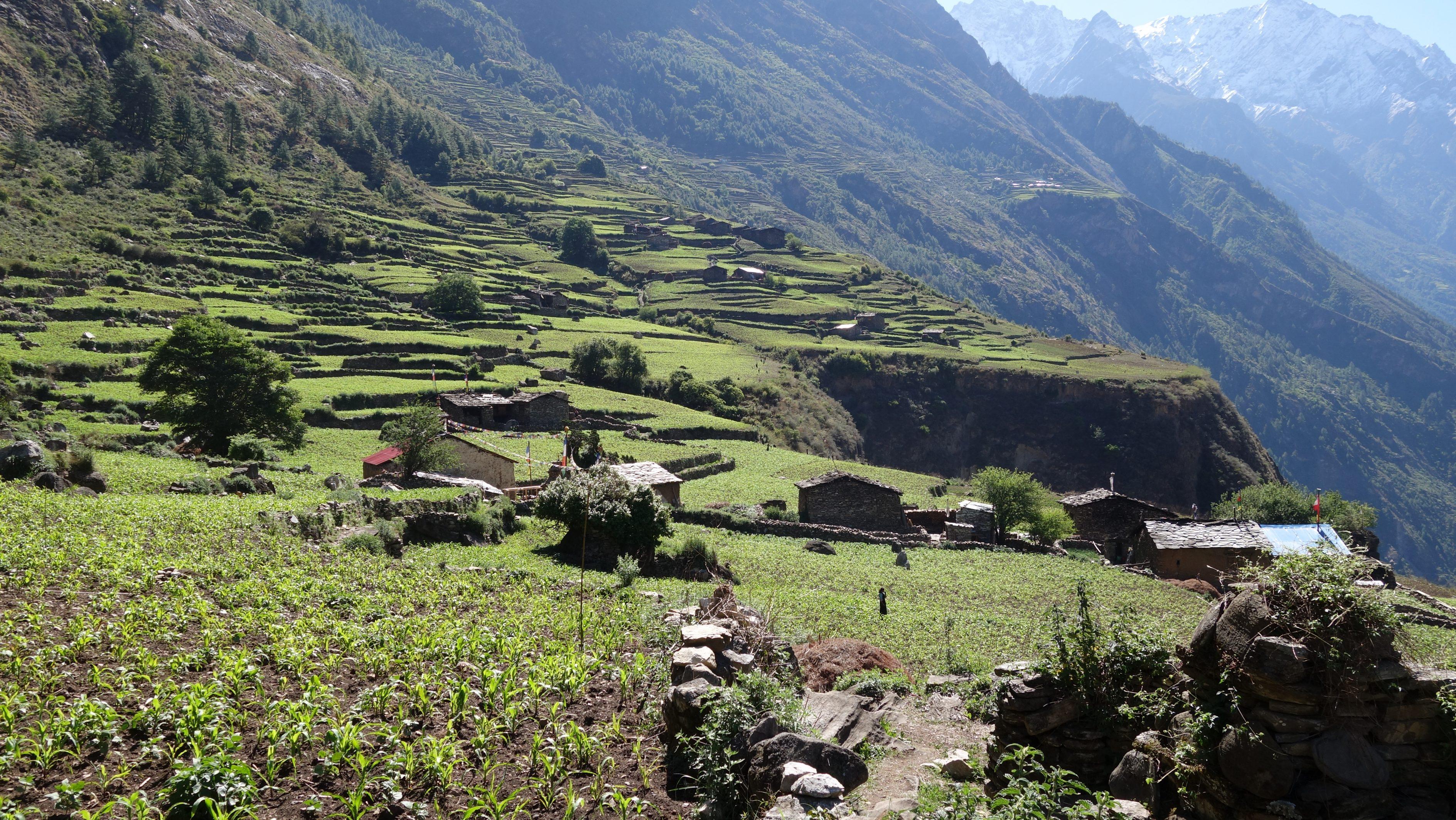 Tsak Village 1
